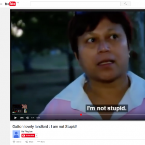 Im not stupid250
