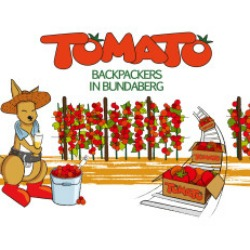 Painting the town red: Tomato Backpackers expands - The Byte